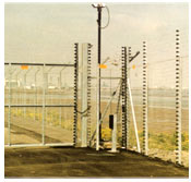 Electric Security Fence and Gate